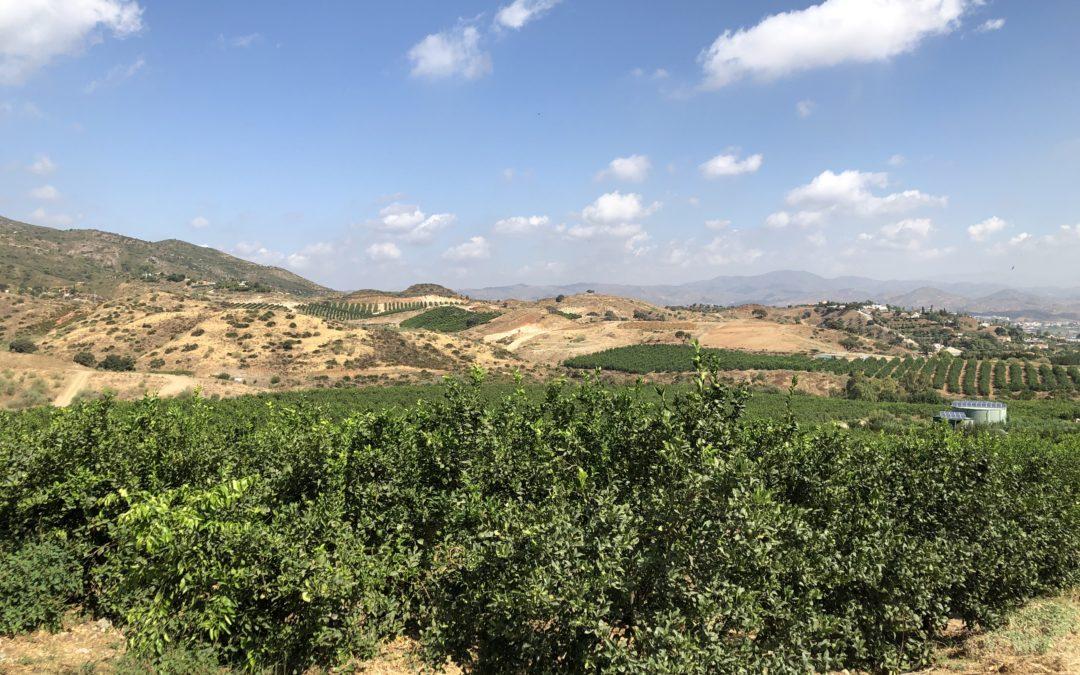 Vegaverde Experience: la huerta natural Andalusí en la Costa del Sol